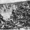 ナチスの人体実験を指揮した『メンゲレ、二度目の人生を異世界で再び殺戮三昧』・・・が発売禁止!?
