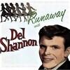 聴き比べ デル・シャノンとボニー・レイット『ラナウェイ(Runaway)』