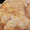 お手軽ワンコイン丼 #08「牛シマ腸丼」超脂でこれはダメだ! 男飯