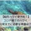 【12月ハワイ便予約!】コロナ禍でのハワイ〜出発までに必要な準備は?