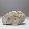糸魚川紋様石vol.11「呼んだ? のカエル石」奇石という奇跡