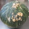 見栄えの悪い自家栽培かぼちゃの料理