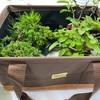 盆栽の持ち運びグッズ、何を使ってますか?