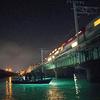 浜名湖の奇跡、流れてくるクルマエビを船上から網ですくう『えびすき漁』体験