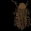 第一印象ゴキブリだったら人生詰むだろな