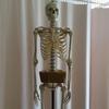 骨の整体、利用頻度に制限はありません。