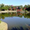 ウォーキングで紅葉の彦根城へ Part1 ~ 玄宮園~