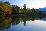 札幌の秋。中島公園と大通公園の夕暮れ時に、紅葉を眺める。