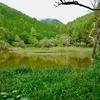 伝説の大池(長野県大鹿)