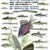 淀川水系淡水魚講座10月7日