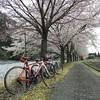 桜も凍える朽木ライド100kmは食べ道楽