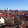 世界一周76日目  エストニア(28)  〜絵葉書のような絶景の街・タリン〜