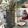 クレット島でジャズの流れるカフェ