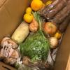 自然農法の宅配野菜をおすすめする理由4つ