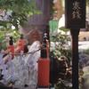 Photo No.293 / 久しぶりにモノクロ現像