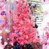 クリスマスツリー飾りました〜☆*:.。. o(≧▽≦)o .。.:*☆
