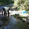 ペーチャン川の寄せ場、、、掘り尽くした?