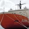 南極観測船「しらせ」 新旧そろい踏み一般公開