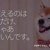 234食目「笑えるのは人だけ、じゃあないんです。」犬は笑えません、残念。