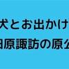 【犬とお出かけ】関東編・小田原諏訪の原公園!パグがローラー滑り台に挑戦