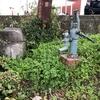 安川緑道公園歩いてますと懐かしい手押しポンプがあります。注意、この水はのめません。