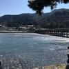 大混雑の京都嵐山へ、絶景の渡月橋から見る世界観光地ランキング〜陸マイラーブログの箸休め②