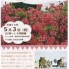 つつじが咲き誇り緑と紅のコントラストが美しい神野山で開催【神野山つつじまつり】(山添村)
