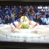 相撲協会(大相撲九州場所③)