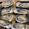 上野アメ横にある「くとら酒場 」の「殻付き生牡蠣」 は、口からあふれる大粒サイズ!