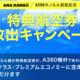 ANAがハワイ特典航空券を期間限定で全開放、「A380ホノルル就航記念」キャンペーン