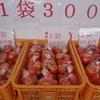 天野柿と、黒柳の温泉まんじゅう(静岡県伊豆の国市)
