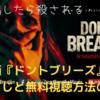 【映画】「ドント・ブリーズ」のあらすじと無料視聴方法を紹介【ネタバレなし】