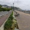 熱海の海岸です。