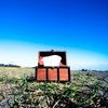 【報告】ぼんどと花粉症(その3)