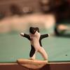 鰹節でバックサイドノーズグラインドする猫(ハチワレ)