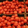 トマトの栄養と効能。トマトローディングの効果について調べてみました