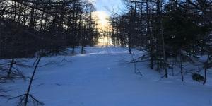真冬の浅間山登山でウンコしてたら凍傷になった話