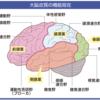 皮質徴候とラクナ徴候の違い