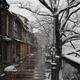 雪景色シリーズ始まります!