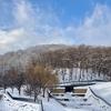 佇む雪だるま・・・藻岩山
