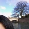 イギリス留学記 イギリス名物『パンティング』 留学生の私は無料で楽しめちゃいました^^