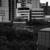 沖縄では西は太陽が沈む方角なのでイリと呼ぶらしい(西表島など)