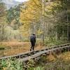 『一足早い紅葉』キャンプの合間を縫って『トレッキング』『in上高地』