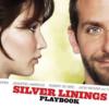 【映画、書籍レビュー】ただのクソポジティブ映画じゃない、Silver Lining Playbook / 世界にひとつのプレイブック