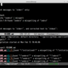 Spell checking with misspell command from Emacs