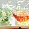 ティーバッグを使って水出し紅茶を美味しく作れる?実は危険って本当!?
