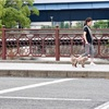 横浜石川町の亀の橋付近