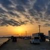 ❝愛宕山無料駐車場で車中泊・銚子港で釣り🎣❞ 愛犬とおでかけ-千葉県観光🎵  2021年3月20日①