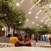 【カジュアルコリアンレストラン】Sopoong @ Citta Mall