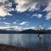 ワナカ湖でのんびりステイ